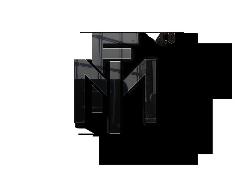 FMI 4.0 logo riflesso